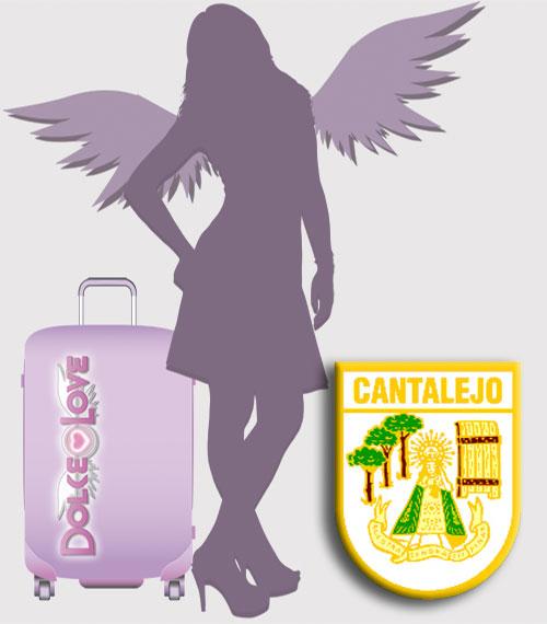 Te interesa Ser una Asesora Tuppersex en Cantalejo.