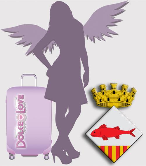 Te interesa Ser una Asesora Tuppersex en Mollet del Vallès.