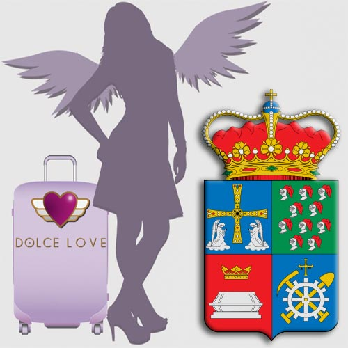 Te interesa Ser una Asesora Tuppersex en San Martín del Rey Aurelio.
